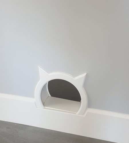 Custom Cat Door